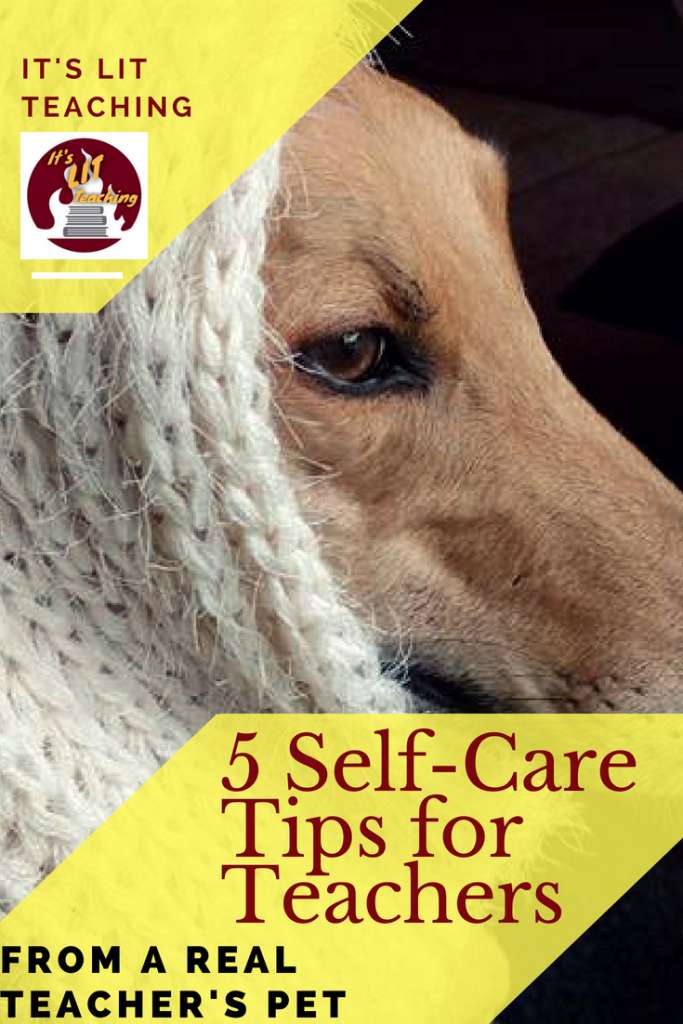Pinterest pin for article about self-care tips for teachers